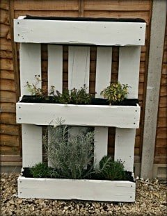 herb garden made out of a pallet